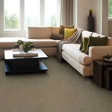 carpet cleaning in oak park