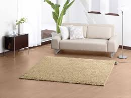 carpet cleaning in orchard lake village