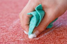 carpet cleaning metro detroit