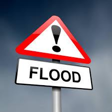 house floods in metro detroit