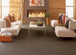mi cheap carpet cleaning