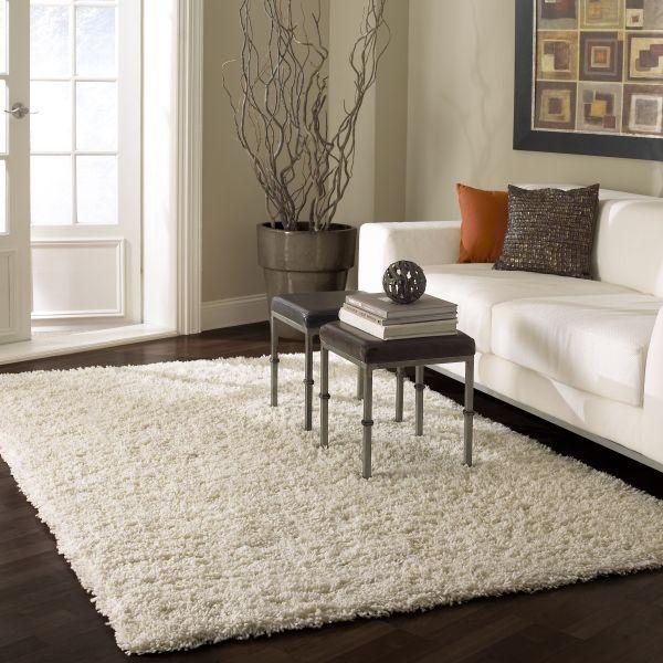 carpet cleaning options mi