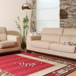 carpet cleaners Niles Michigan